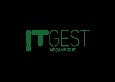 logo_empresas_ID_ITGEST_MZ_green